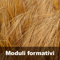 moduli-formativi