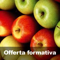 offerta-formativa